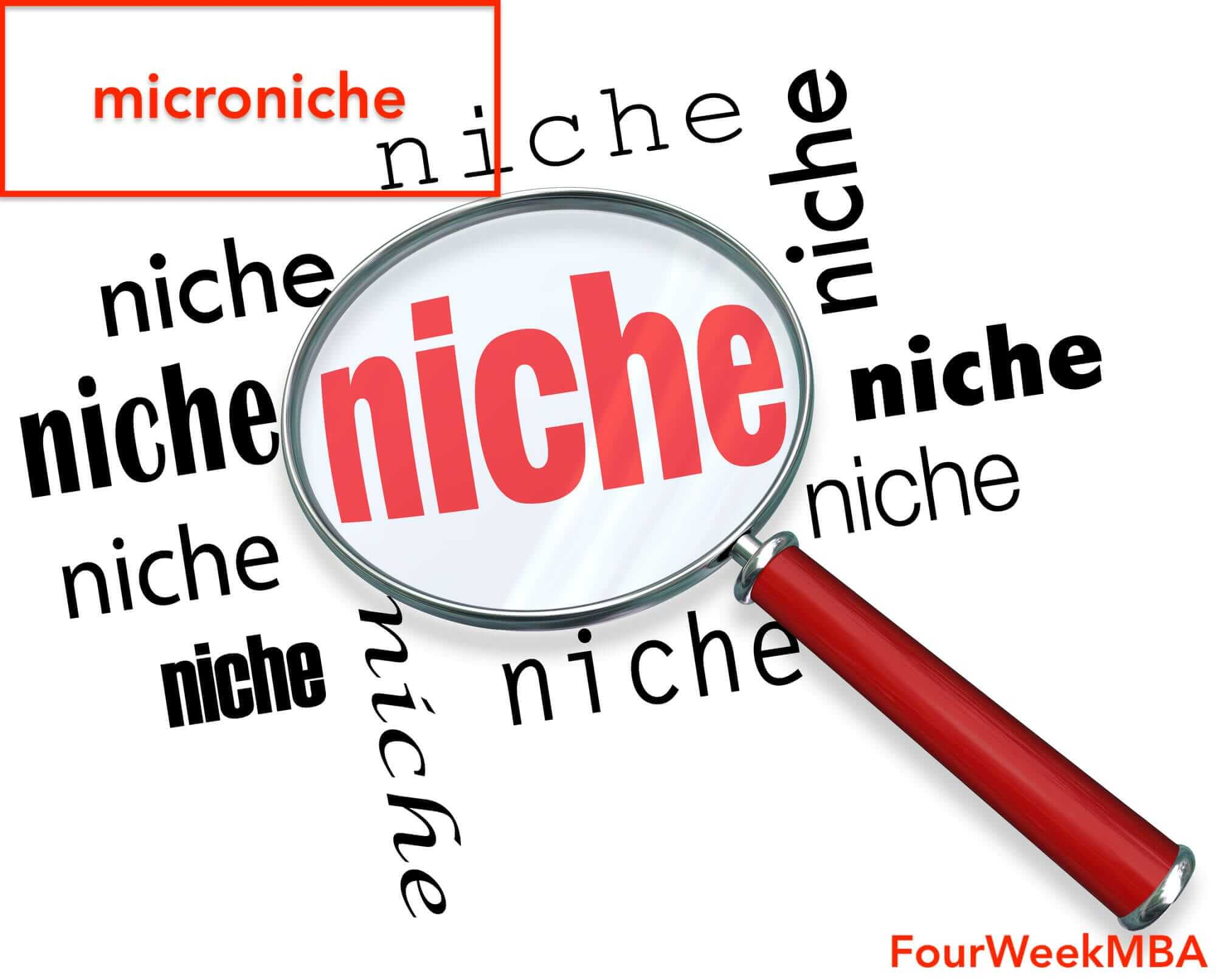 Microniche: The New Standard In The Era Of Dominating Digital Tech Giants